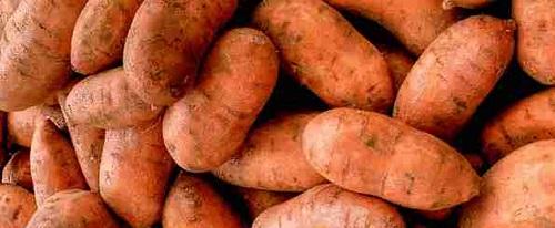 Patates douces : un des précieux alliés du crossfiteur en terme de récupération.