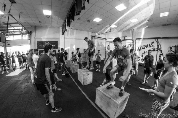 CrossFit Elephas