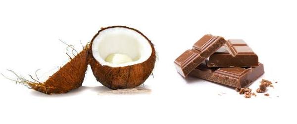 RECETTE #5 palets chocolat noix de coco