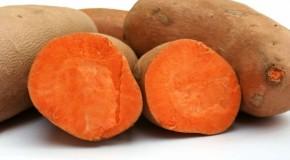 Aliments santé : la patate douce