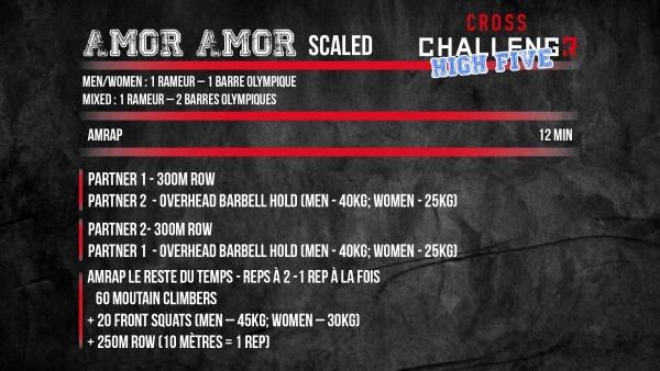 Amor-Amor-Scaled