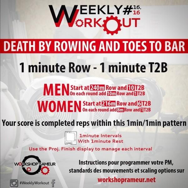 workshop, rameur, weekly workout